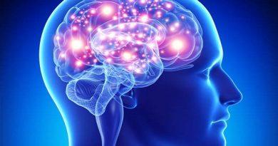 आपके दिमाग को कंप्यूटर बना सकती है ये 7 जड़ी बूटियां