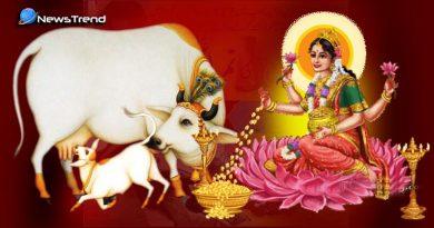 बेहद रोचक : जानिये गाय की की दो चीज़ों में होता है माँ लक्ष्मी का निवास और क्यों?