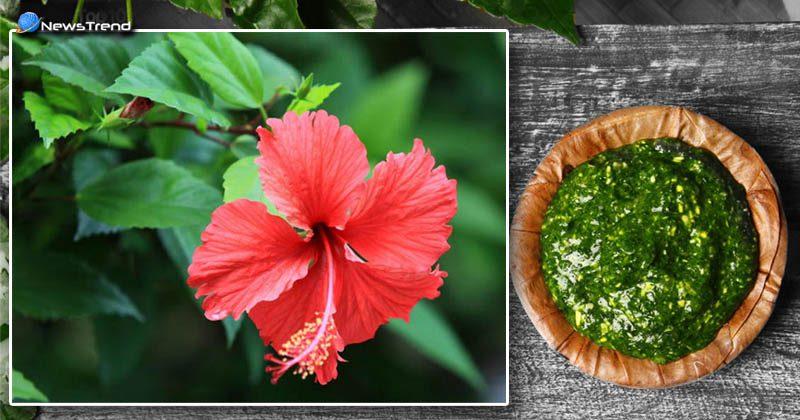 hibiscus flower 5 benefits