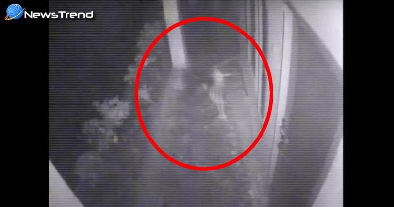 cctv ghosts footage