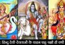 क्या आप जानते हैं कि हिन्दू देवी-देवताओं के वाहन पशु-पक्षी ही क्यों होते हैं, नहीं? तो जाने यहाँ!