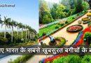 भारत के ये बगीचे मोह लेंगे किसी का भी मन, जानिए भारत के सबसे खुबसूरत बगीचों के बारे में!