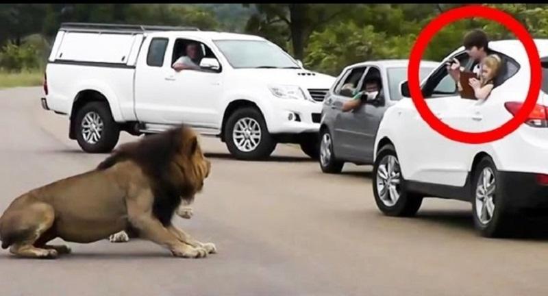 Photo of देखें दुनिया का सबसे ख़ास वीडियोः जिस ने भी देखा रो पड़ा! जानें ऐसा क्या है इस वीडियो में?
