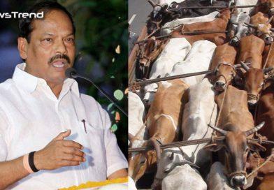 सीएम योगी की राह पर रघुबर सरकार: यूपी के बाद अब झारखंड में भी बंद होंगे अवैध बूचड़खाने