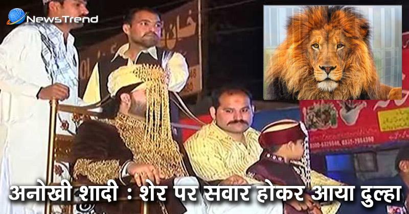 Photo of घोड़ी पर नहीं, बल्कि पिंजरे में बंद शेर पर सवार होकर शादी करने पहुंचा ये दूल्हा…देखें वीडियो!