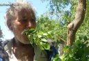 यह व्यक्ति पेट भरने के लिए खाना नहीं बल्कि खाता है पेड़ों के पत्ते और लकड़ियां…. देखें वीडियो!