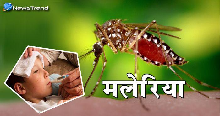 अब और जान नहीं जाएगी मलेरिया की वजह से, मलेरिया की रोकथाम के लिए हुई कारगर उपाय की खोज!