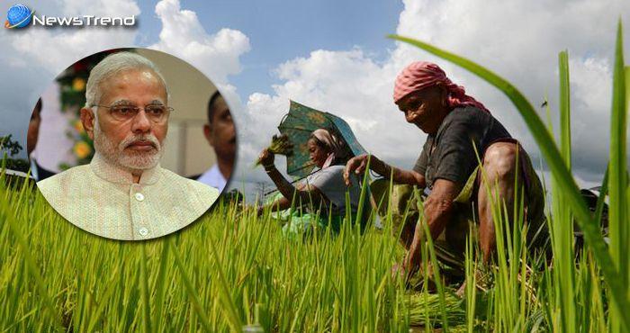 किसानों की कर्जमाफी की कीमत कौन चुकायेगा? ये जान लेंगे तो मोदी सरकार को कोसना छोड़ देंगे!