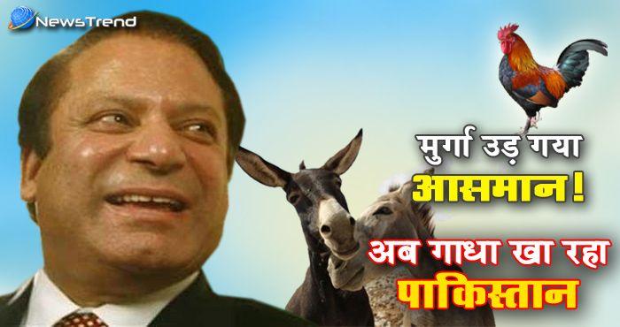 गदहा खोर पाकिस्तान! पाकिस्तानी मुस्लिमों का गधा खाते वीडियो हुआ वायरल – देखें
