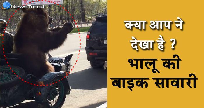 भालू की बाइक सवारी : भालू को ऐसा करते देख हैरान रह गए लोग... देखें वीडियो!