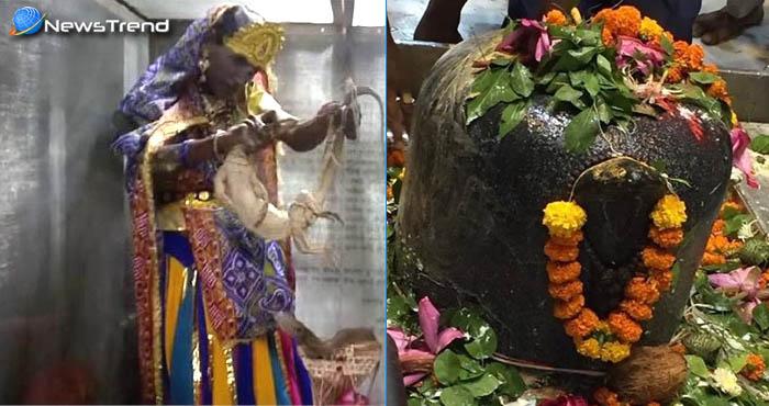भगवान शिव की ऐसी अनोखी भक्ति नहीं देखी होगी आपने, साँप और विजखोपडों से किया अभिषेक