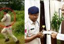 400 मासूम बच्चों की जान बचाने के लिए 10 किलो वजनी जिंदा बम लेकर दौड़ पड़ा पुलिस का जवान