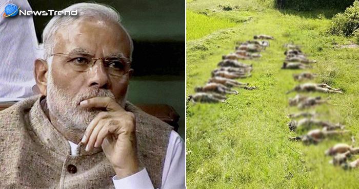 म्यांमार की हालत और हिन्दू कब्रों पर भारत ने आखिरकार तोड़ी अपनी चुप्पी, कहा ये..