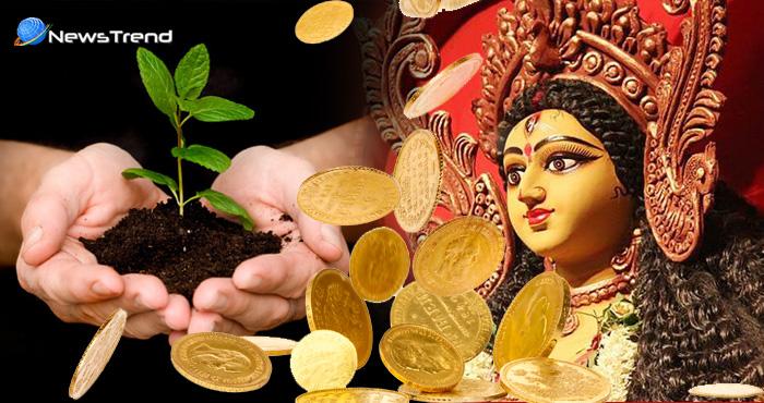 बिना किसी को बताए इस नवरात्रि घर में लगाएं ये पौधें, होगी धन की वर्षा