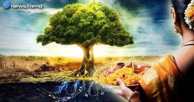 अगर आपके घर के पास भी उगे हों ये पेड़-पौधे तो जरुर करें उनकी पूजा, खुशियों से भर जायेगा आपका जीवन