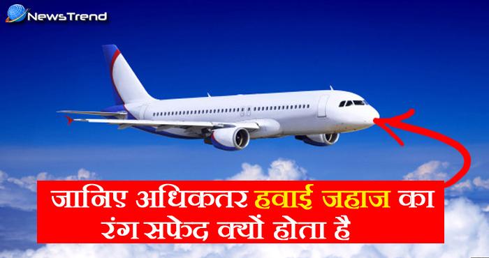 जानिये क्यों हवाई जहाज का रंग सफेद ही होता है ? वजह जानकर दंग रह जाएंगे