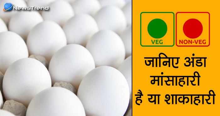 क्या आप जानते हैं अंडा मांसाहारी है या शाकाहारी? तो ये रहा जवाब, शोध में हुआ खुलासा ..