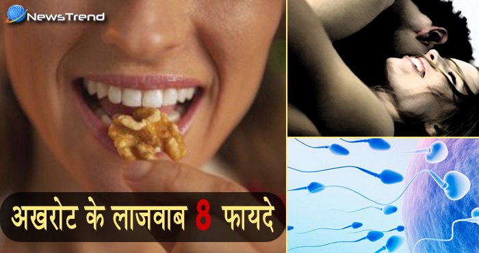 अखरोट में कैलोरी नहीं छुपा होता है सेहत का खज़ाना, अखरोट से होने वाले इन फायदों के बारे में नहीं सुना होगा