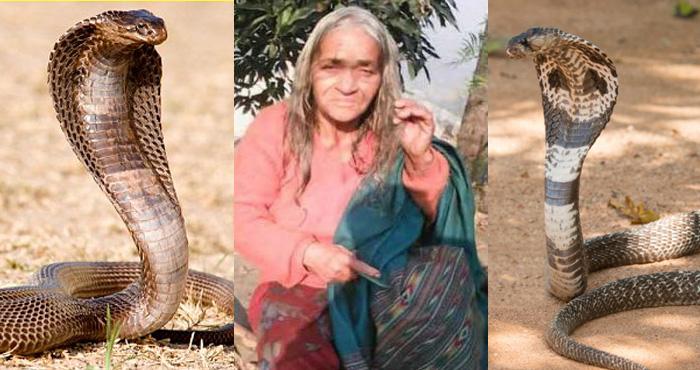 पिछले 42 साल से नाग घेरे हुए हैं इस महिला को, वजह जानकर आपके होश उड़ जायेंगे