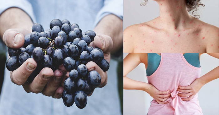 एक मर्ज़ का सौ इलाज है काला अंगूर, आज ही से खाने की आदत डाल लें