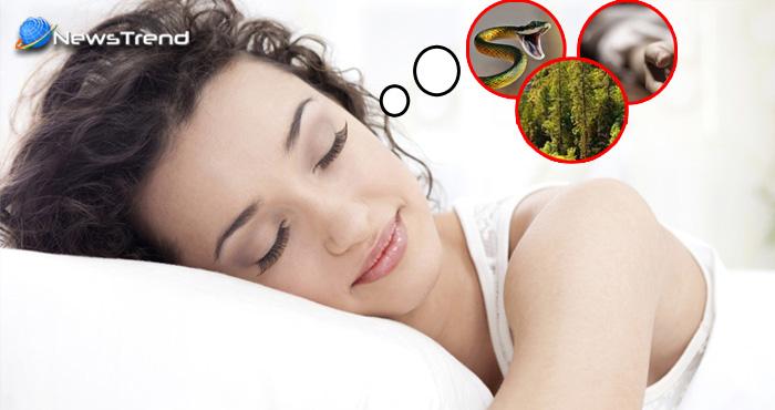 सोते समय आने वाले ये 3 सपने भूल से भी मत शेयर करें, वरना पड़ेगा महंगा!