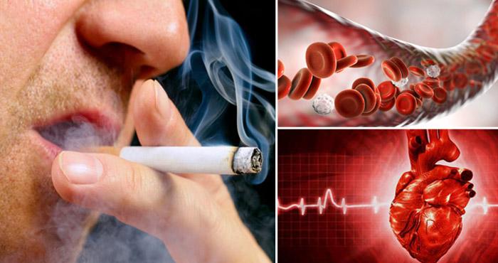 सिगरेट पीने वाले हो जाएँ सावधान,सिगरेट पीने के 20 मिनट के अन्दर होता है यह, जानकर उड़ जायेंगे होश