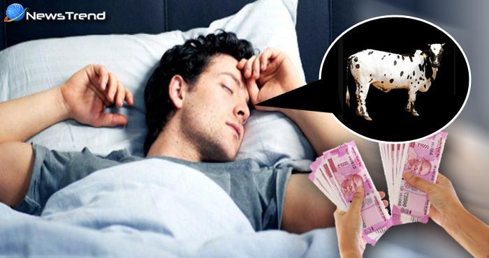 सपने में सफेद गाय दिखे तो होती है धन की प्राप्ति, जानिये चितकबरी गाय दिखने का क्या है मतलब