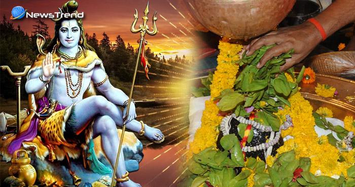 शमी पत्र चढ़ाते समय अवश्य करें इस मंत्र का जाप, भगवान शंकर जल्दी दूर करेंगे आपकी दरिद्रता