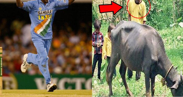 1998 विश्वकप में भारत की जीत का ये हीरो आज भैंस चराने को है मजबूर, इतनी बुरी हो गई है हालत