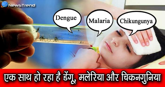 लोगों पर एक साथ टूट रहा है डेंगू, मलेरिया और चिकनगुनिया का कहर, जानिये क्या है इसकी वजह