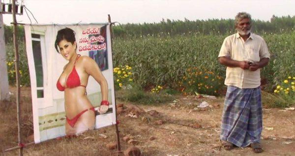 सनी लिओनी की बिकनी वाली फोटो को किसान ने लगाया अपने खेत में, इसके पीछे बताई हैरान करने वाली वजह