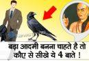 चाणक्य: बड़ा आदमी बनने के लिए कौवे से सीखनी चाहिए ये 4 बातें, कौन सी हैं वो बातें?