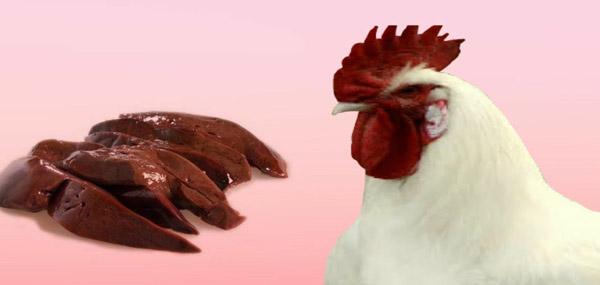 मुर्गे की कलेजी खाने वाले 99 प्रतिशत लोगों को नहीं पता होगी ये बात, जानेंगे तो हैरान रह जाएंगे