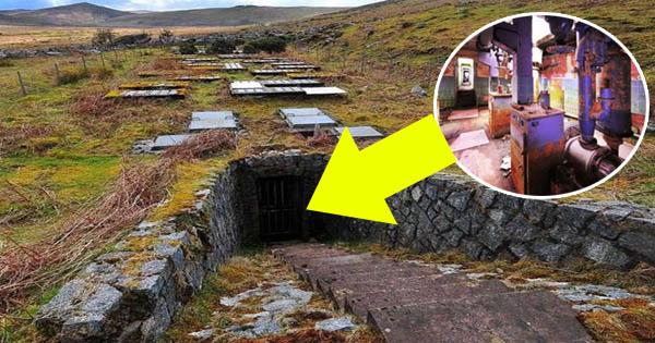 वीराने में बनी इस जगह को लोग पिछले 50 सालों से समझ रहे थे सुरंग, लेकिन नीचे कुछ और ही सच्चाई