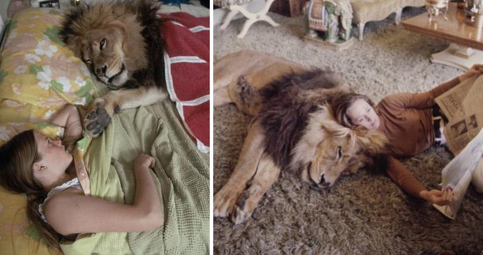 लड़की सोती है शेर के साथ