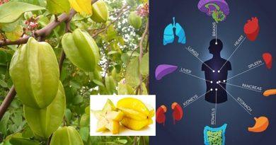 कमरख फल है स्वास्थ्य के लिए वरदान, इन 6 समस्याओं को करता है चुटकी में दूर