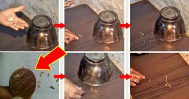 जादुई धातु पल भर में अरबपति बना रहा है ये 'जादुई सिक्का', पाने के लिए पागल हो गई है पूरी दुनिया