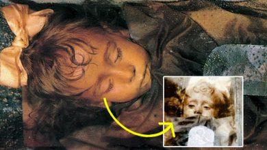 मरने के बाद भी इस बच्चे ने झपकाई थी पलकें, रोजालिया लोबरडो