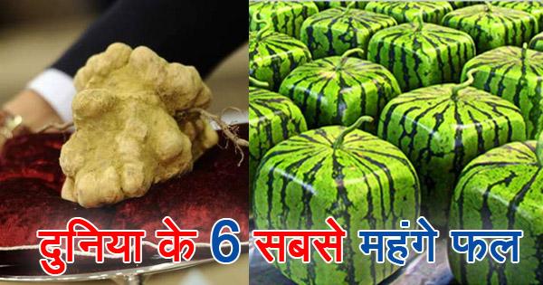 ये हैं दुनिया के 6 महंगे फल, ख़रीदने के लिए बेचना पड़ेगा आपको घर