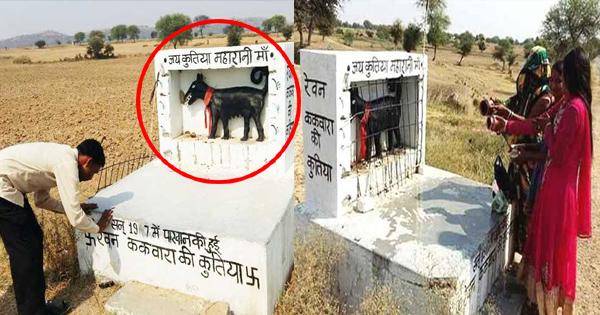 UP के इस गांव में हैं कुतिया देवी का मंदिर, लोग करते हैं पूजा जानिए इस मंदिर की पूरी कहानी