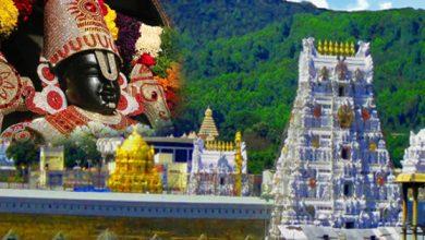 तिरुपति बालाजी मंदिर, तिरुपति बालाजी मंदिर में ख़ुद से प्रकट हुई थी भगवान की मूर्ति