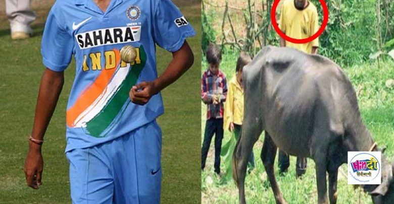 जहाँ IPL में खेल कर खिलाडी हो रहे हैं मालामाल, वहीँ वर्ल्ड कप का ये विजेता भैंस चराने को है मजबूर