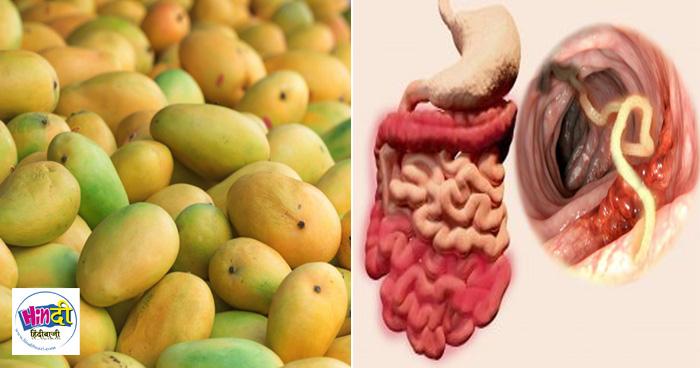 आम खाने के बाद भूल से भी ना खाएं ये 3 चीज़ें, वरना सड़ जाएँगी आंतें, जान तक जा सकती है
