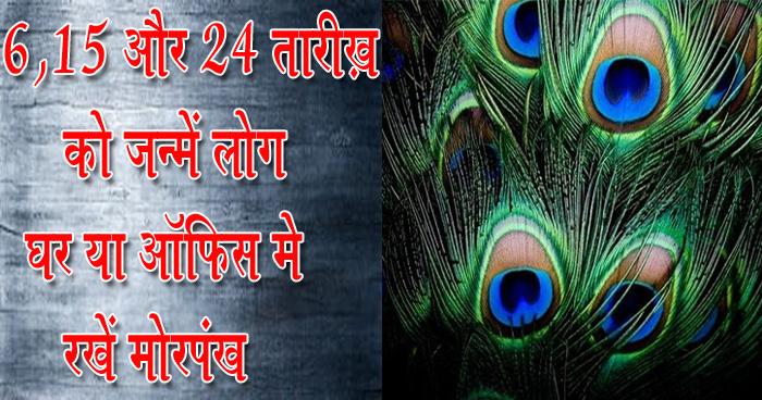 6, 15 और 24 तारीख़ को जन्में लोग घर या ऑफ़िस में रखें मोरपंख, होगी ख़ुशियों की बरसात