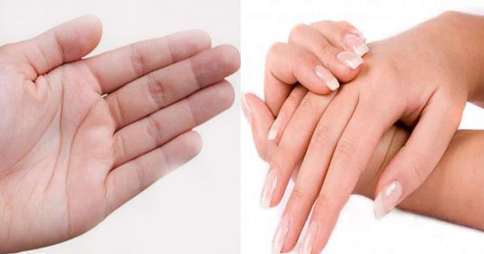 Photo of जानिये कैसे उँगलियों को देखकर जान सकते हैं महिला की पसंद-नापसंद और उसका व्यक्तित्व