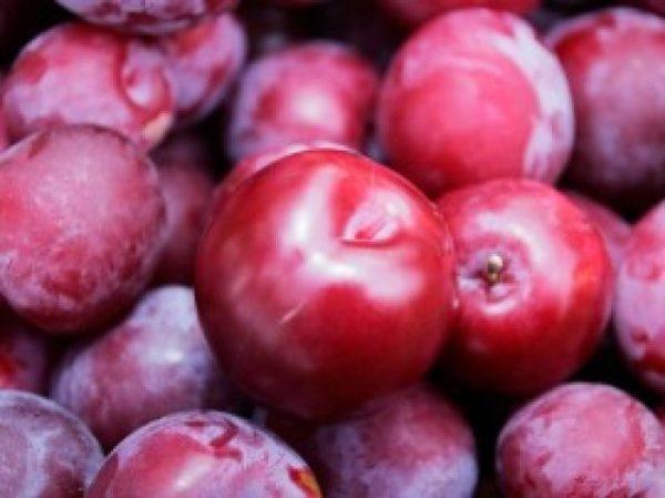 यह सस्ता फल है कई बीमारियों का रामबाण इलाज, इससे ये 6 बीमारियां हो जाएंगी जड़ से खत्म
