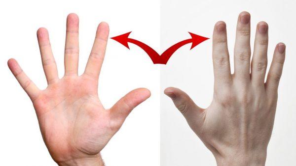 आपके हाथ की उंगलियों का गैप खोलता है आपके कई राज, जानिए इसके बारे में