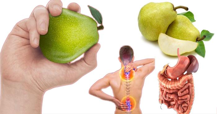 Photo of नाशपाती खाने से दूर होती हैं ये 8 बीमारियां, नंबर 3 से तो है हर दूसरा इंसान परेशान