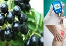 जामुन के फायदे हैं अद्भुत, इन रोगों से दिलवाते हैं छुटकारा