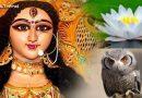 नवरात्रि के दौरान दिख जाए ये संकेत, तो समझिए देवी माँ की है कृपा, मिलेगा धनलाभ
